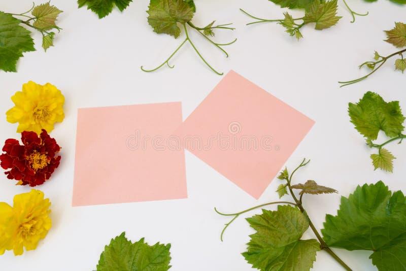 花和藤贴纸 免版税图库摄影