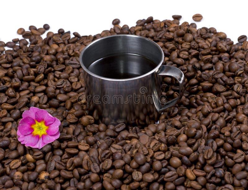 花和钢咖啡在咖啡粒的 库存照片