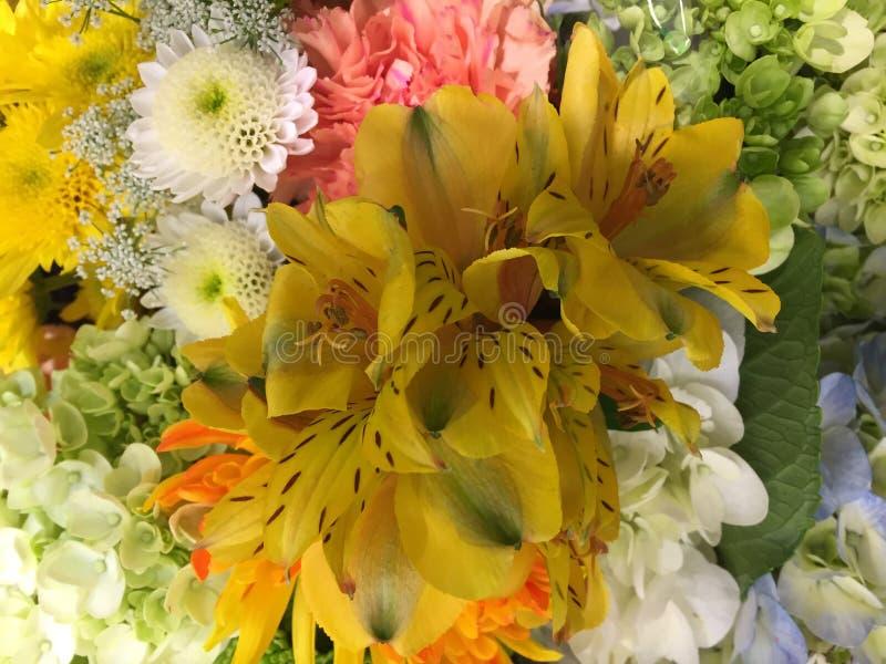 花品种被卖在市场上 库存图片