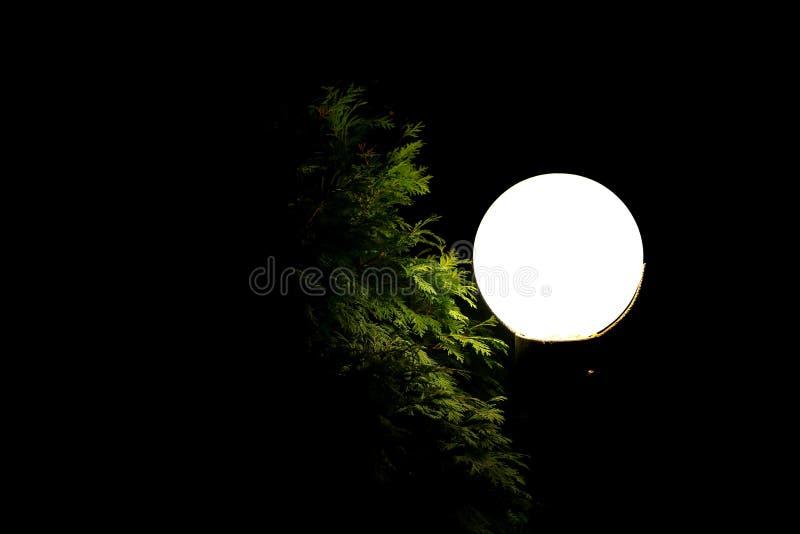 花园中的圆形路灯 免版税图库摄影
