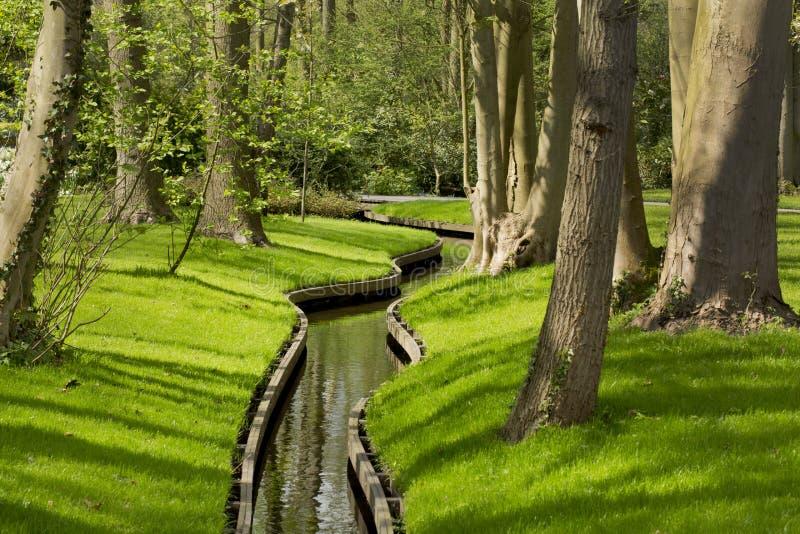 花园在春天 免版税库存照片