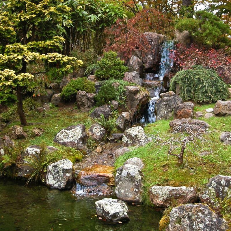 花园大门金黄日本公园sf茶 免版税库存照片