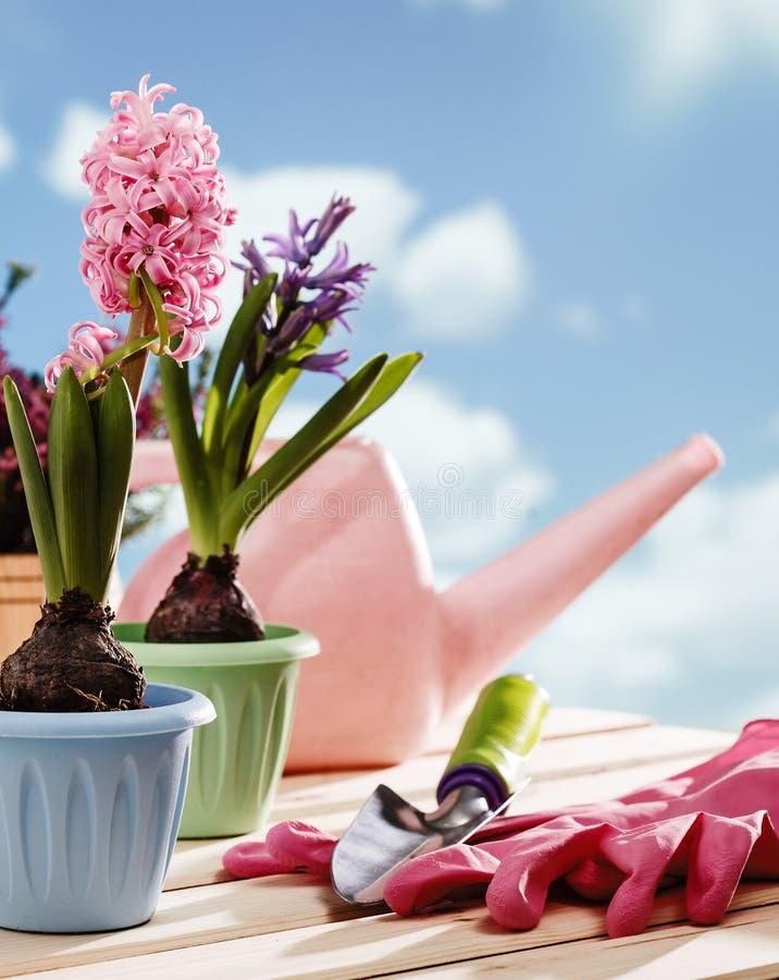 花园艺工具 免版税库存图片