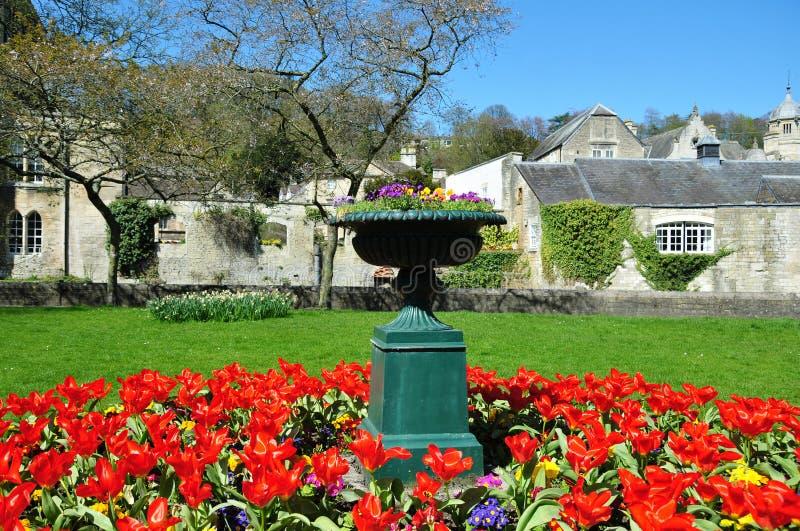 花圃庭院花瓶 库存照片