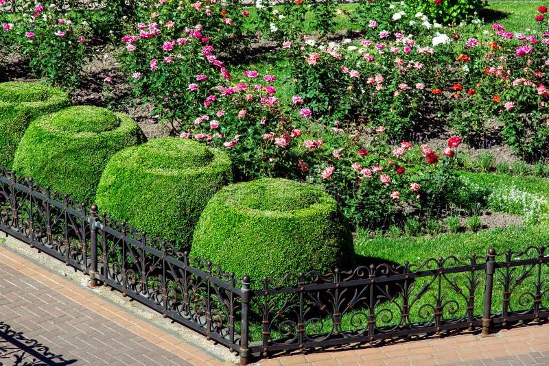 花圃操刀与有小径的黑铁篱芭 库存图片