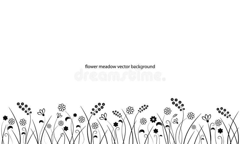 花在白色的草甸边界线 皇族释放例证