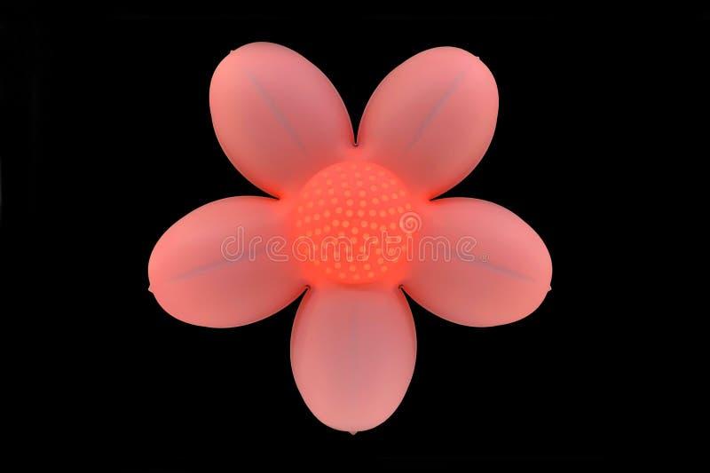 花塑造了发光在黑暗的灯桃红色光 免版税图库摄影