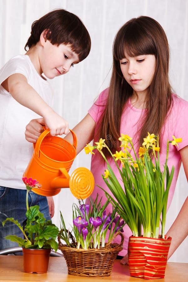花孩子浇灌 库存图片