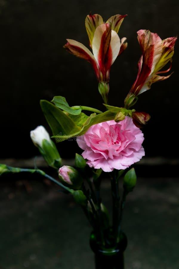 花安排秘鲁百合新鲜的刻花 库存图片