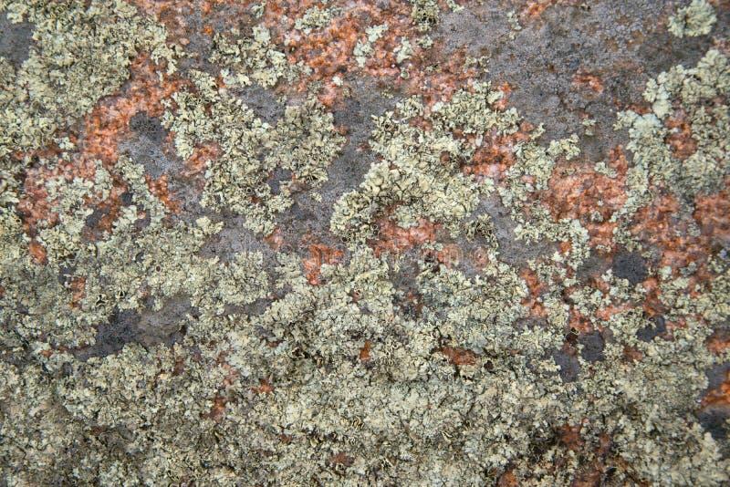 花岗岩岩石特写镜头纹理  库存照片