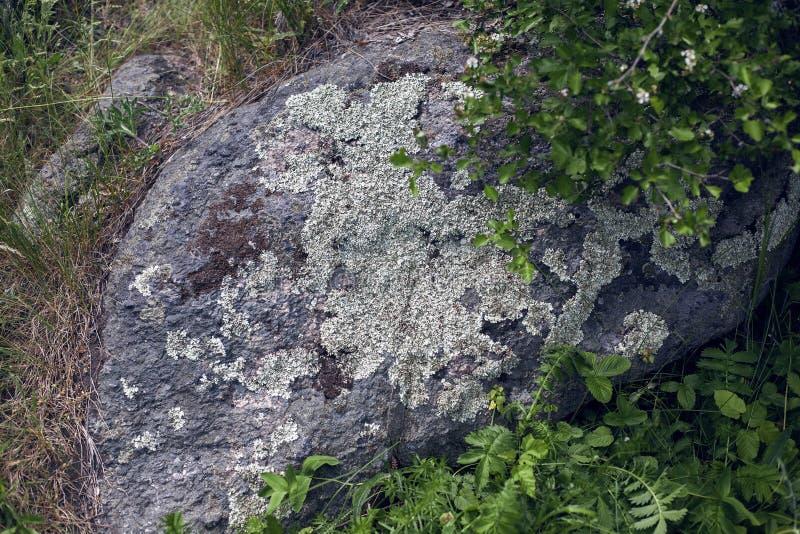 ?? 花岗岩岩石 图库摄影