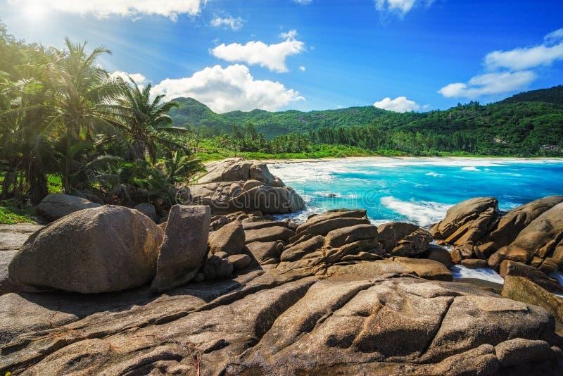 花岗岩晃动,棕榈,狂放的天堂热带海滩,警察咆哮, sey 免版税图库摄影