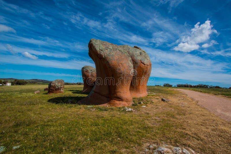 花岗岩inselberg 库存图片
