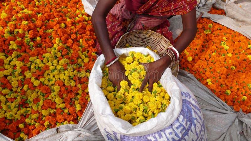 花市场。加尔各答。印度 库存图片