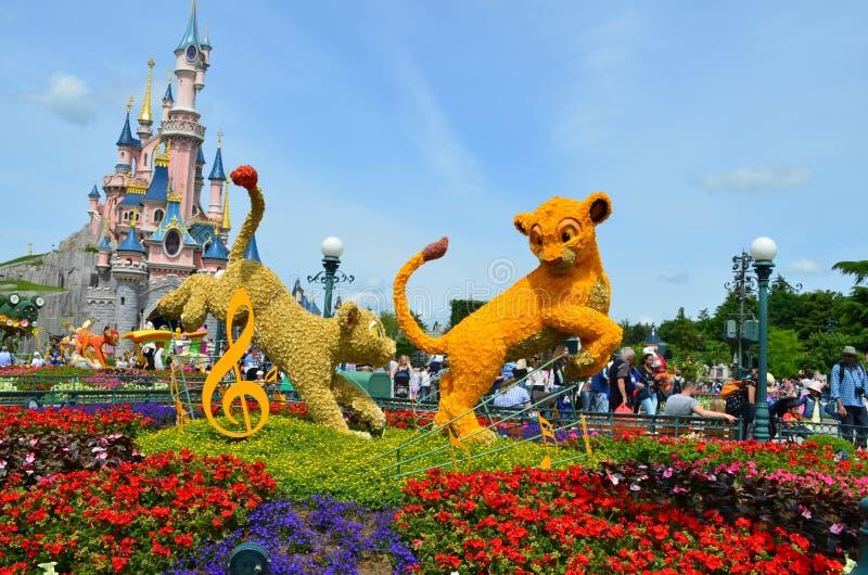 花床在迪斯尼乐园巴黎 库存照片