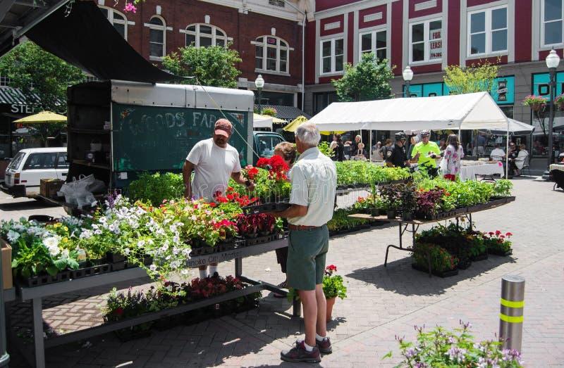 花店在罗阿诺克市农夫市场上 库存图片