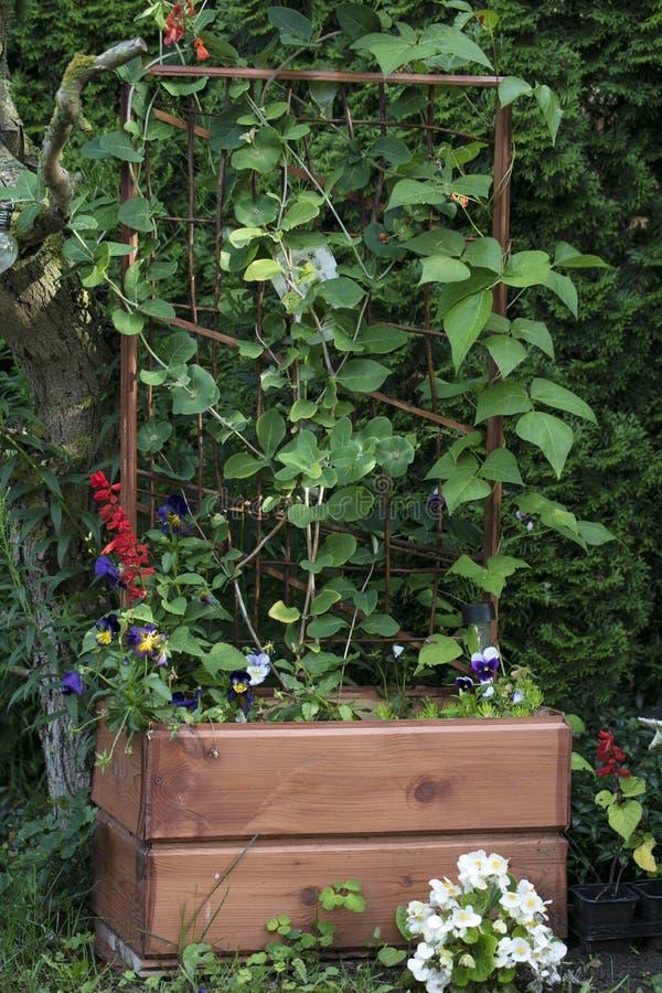 花或上升的齿轮的木花盆 免版税库存照片