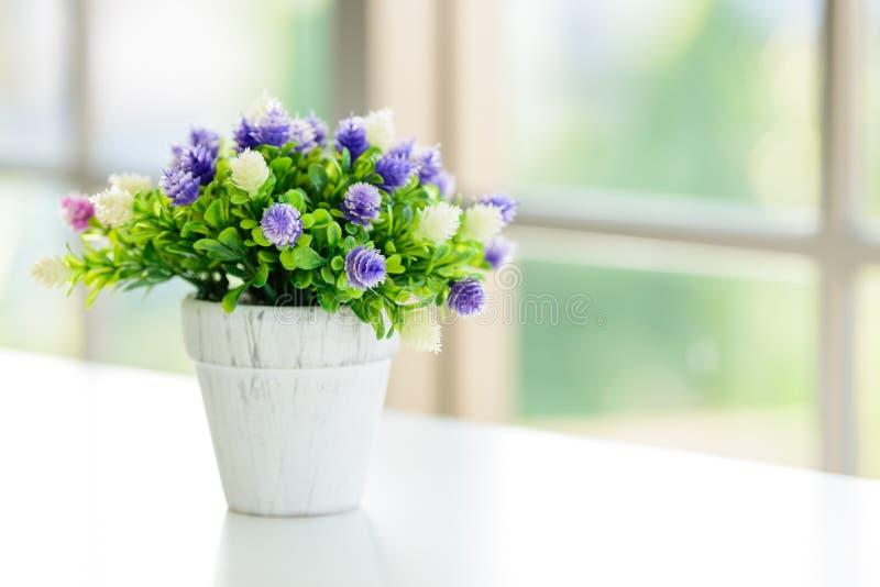 花有窗口背景早晨 免版税图库摄影
