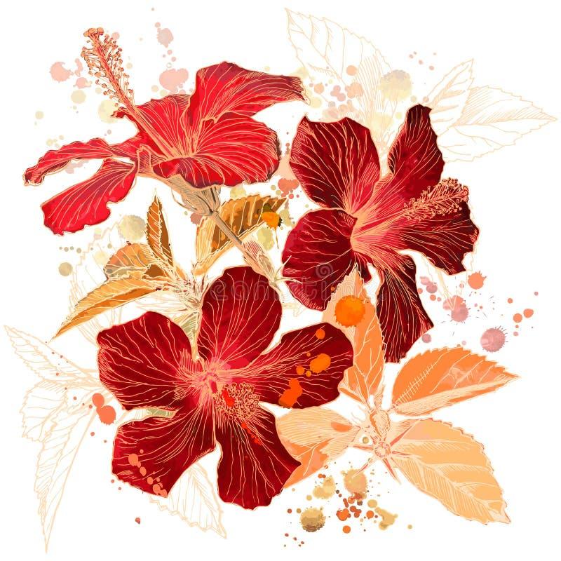 花木槿水彩 向量例证