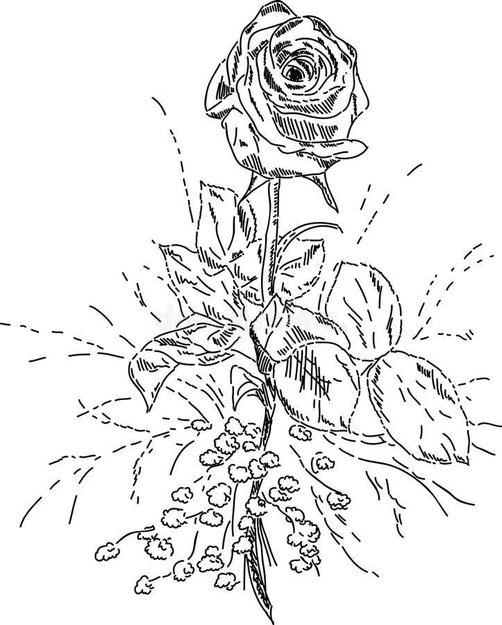 花束上升了 皇族释放例证