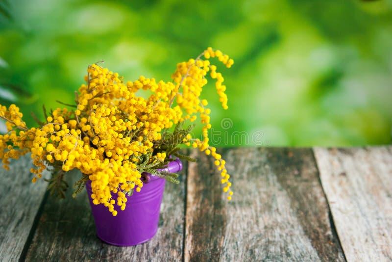 花束含羞草金合欢花为母亲节 免版税库存照片