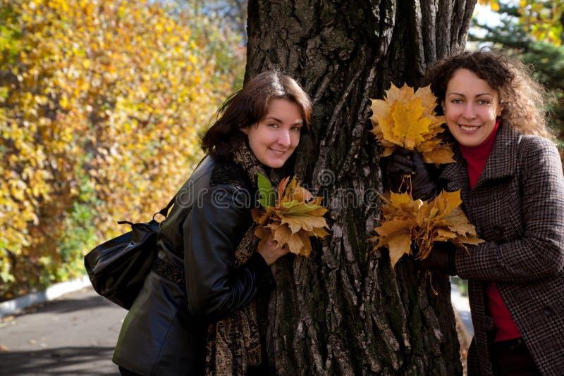 花束在结构树二妇女附近的叶子槭树 库存图片