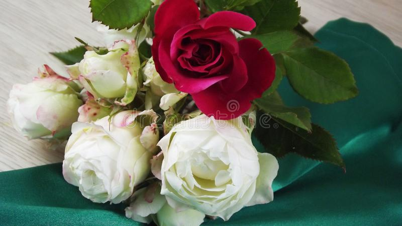 花束新鲜的玫瑰 库存图片