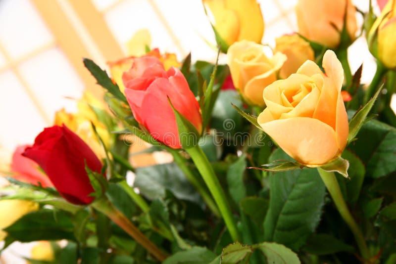 花束玫瑰夏天 图库摄影