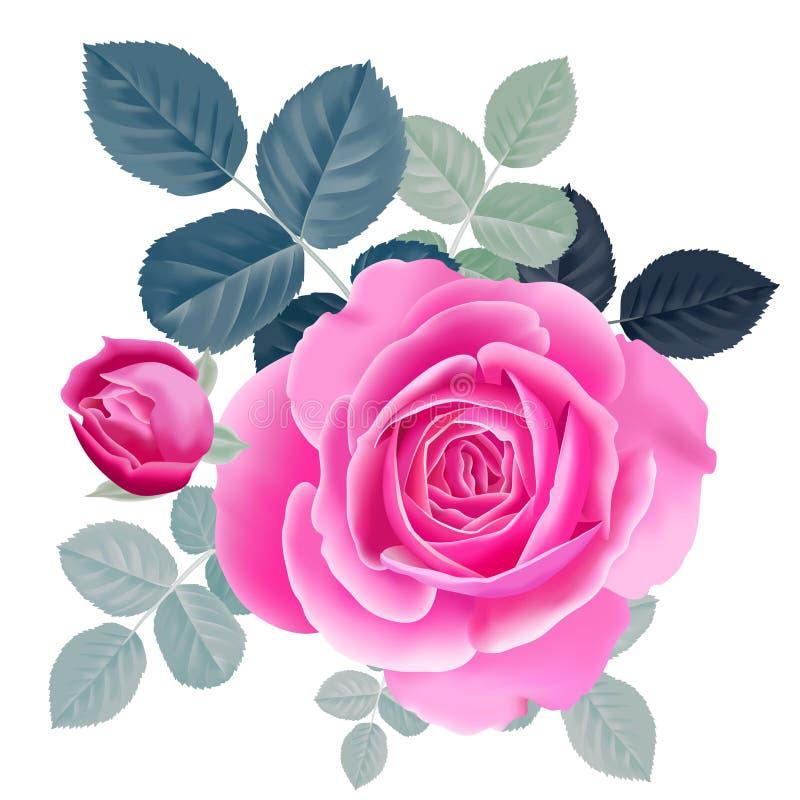 花束粉红色上升了 向量例证