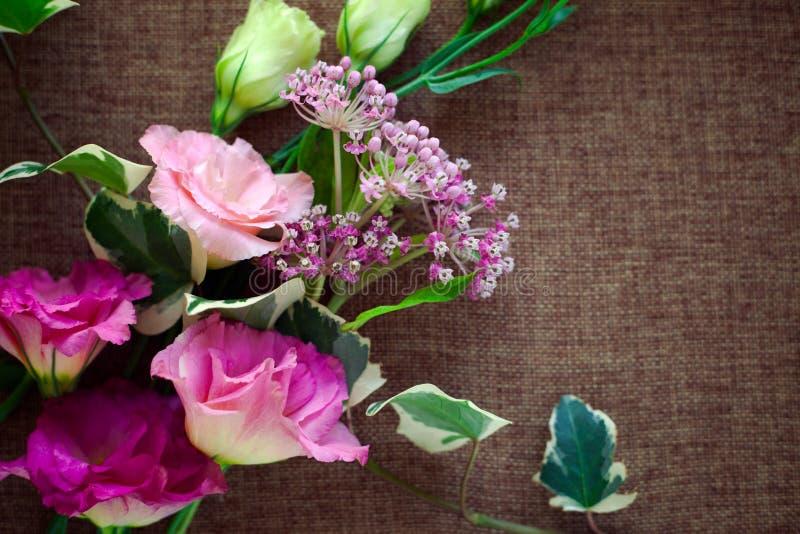 花束美丽的南北美洲香草花Lisianthus,郁金香植物, eus 免版税库存图片