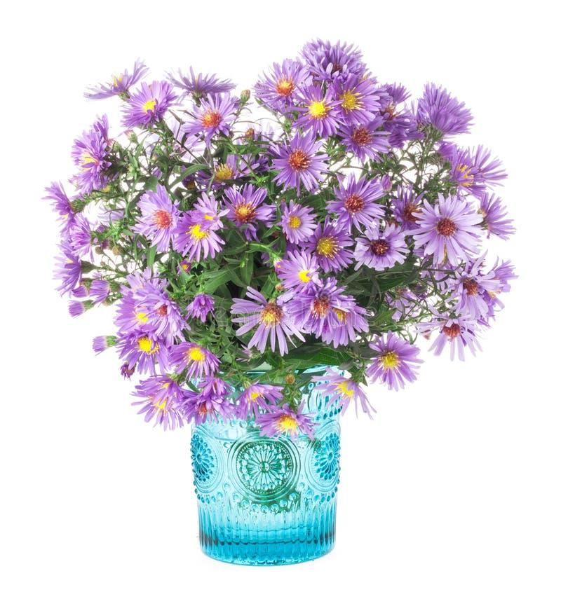 花束紫色秋天花 库存图片