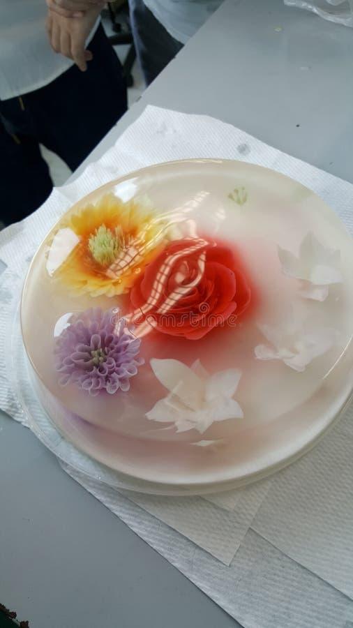 花果冻蛋糕五颜六色的蛋糕 免版税库存图片