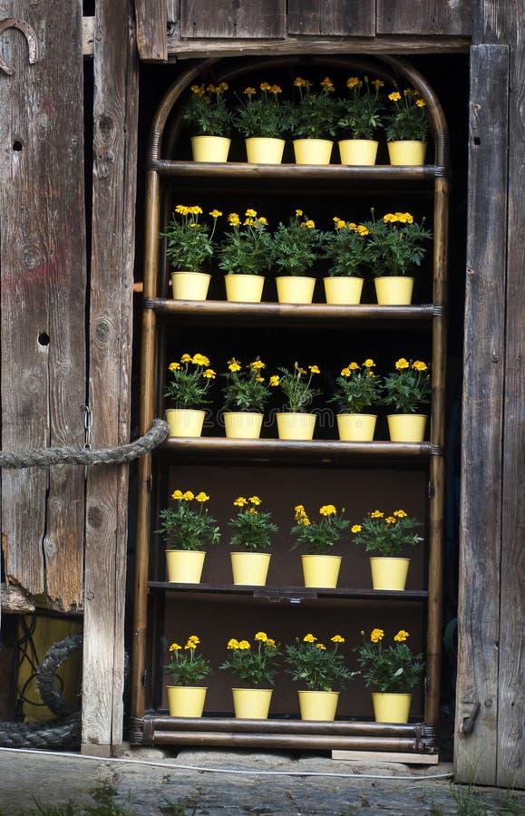 花架子作为毂仓大门的一个替补 免版税库存照片