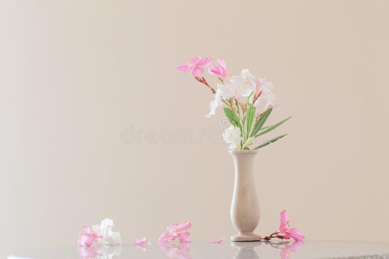 花桃红色花瓶 库存图片