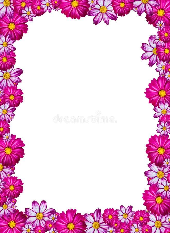 花框架粉红色 皇族释放例证