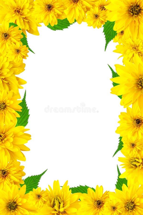 花框架黄色 免版税库存照片