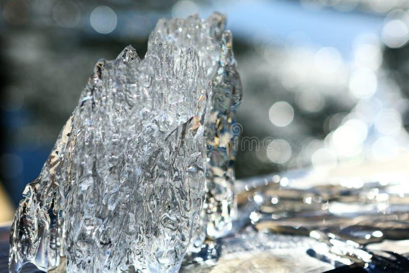 花梢冰川从一个湖在春天捉住了 库存照片
