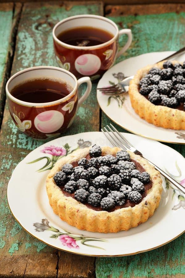 花梢蛋糕用黑莓和巧克力奶油与结冰suga 免版税图库摄影