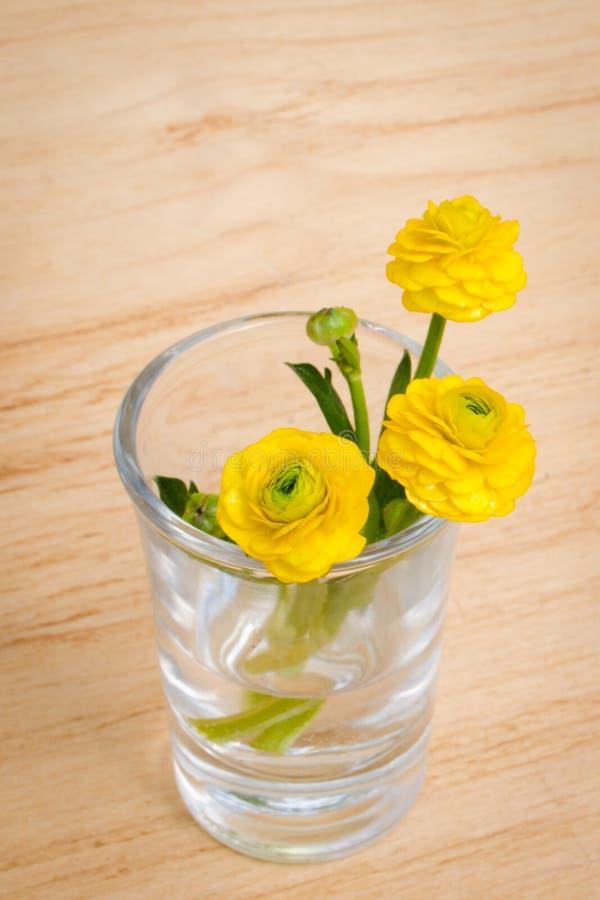 花森林春天白色 花束在玻璃的春天花在木桌背景 看板卡开花弹簧 库存图片