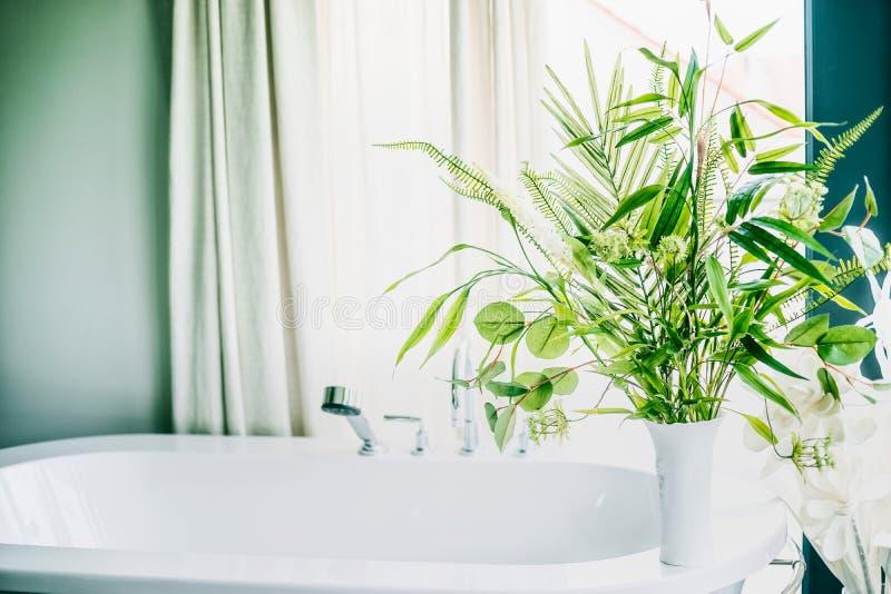 花瓶的绿色室内植物在卫生间,家内部里 免版税库存照片