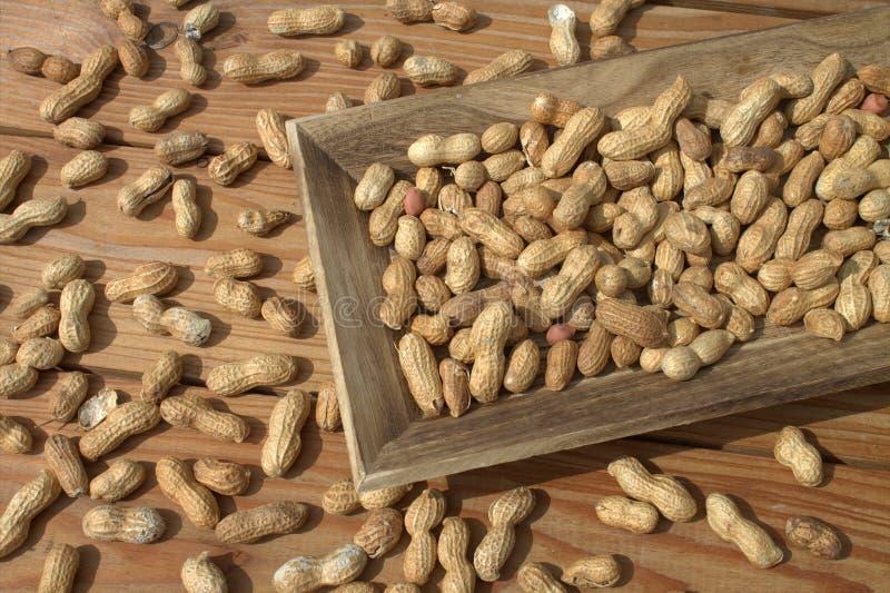 花生,核桃 在木纹理的背景 在一个柳条筐的花生在一张木桌上 图库摄影