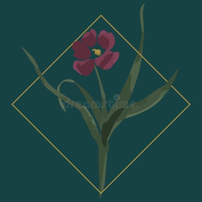 花的传染媒介例证在菱形的 向量例证