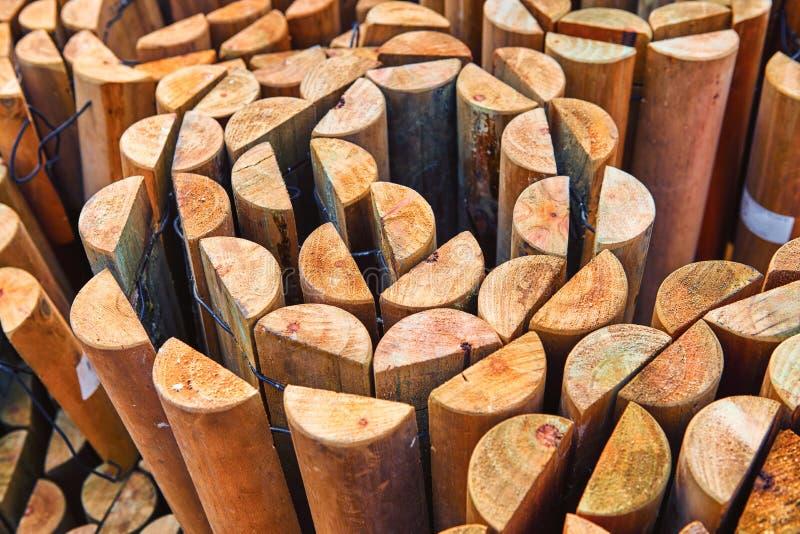 花的木立场自温室 免版税库存照片