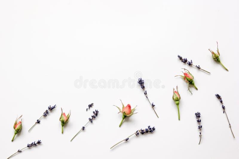 花的样式在白色背景顶视图嘲笑的 免版税库存图片