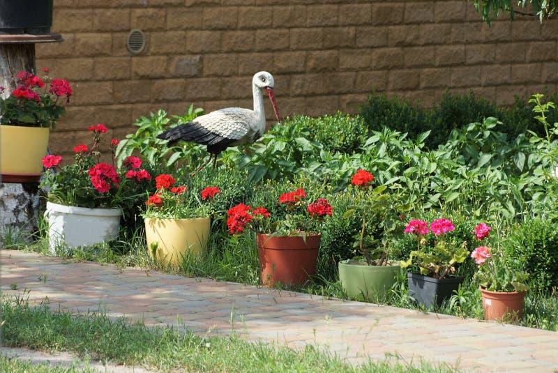 花盆行与红色花的外部在绿草 免版税库存图片