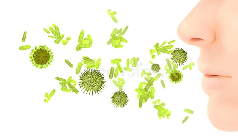 花粉过敏/花粉症流行性感冒传染 库存照片