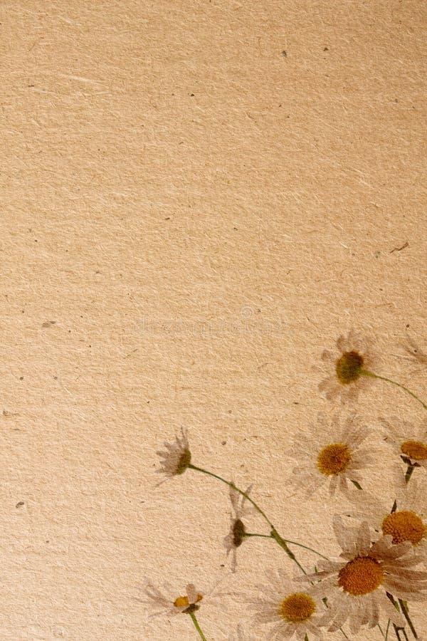 花纸纹理 图库摄影