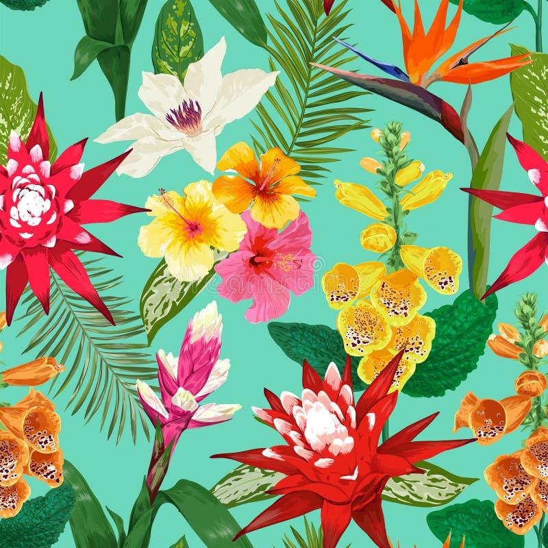 花纹花样无缝热带 与卷丹花和Hibiskus的夏天花卉背景 开花的设计 皇族释放例证