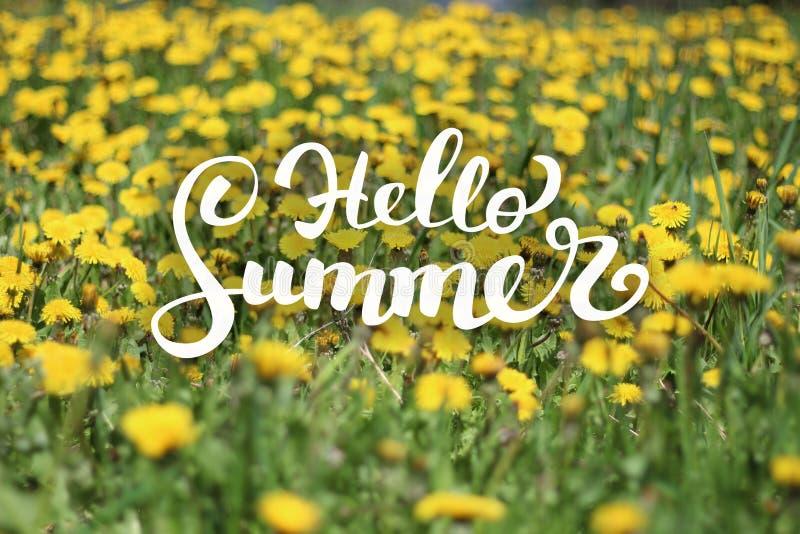 花背景和你好夏天字法 库存图片