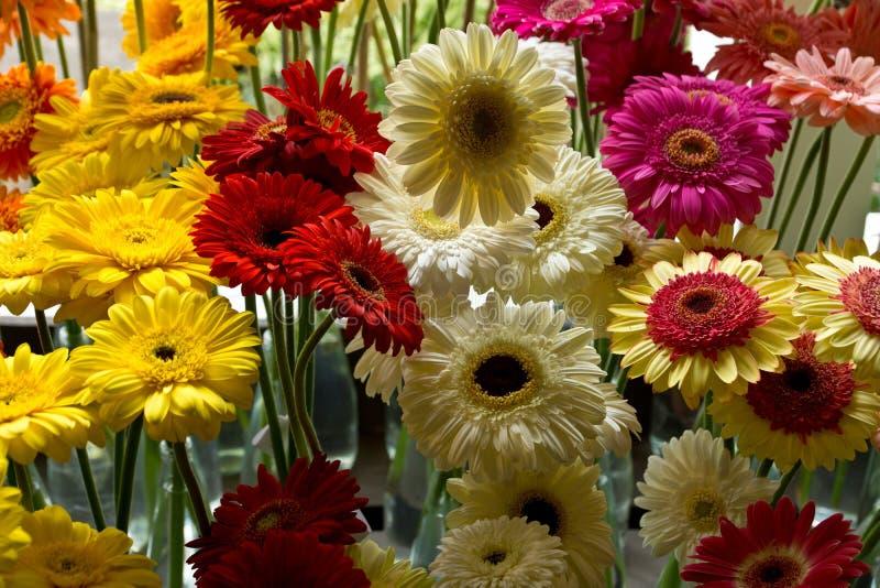 花节日在丰沙尔 免版税图库摄影